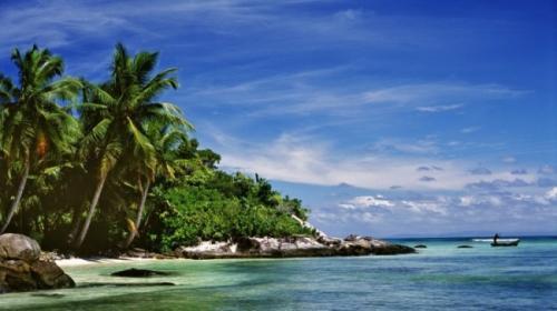 madagascar-Sainte-Marie : pillage des concombres de mer et catastrophe écologique