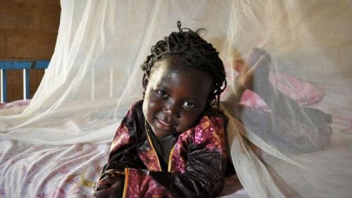 madagascar-Madagascar: 70 millions de dollars pour la lutte contre le paludisme