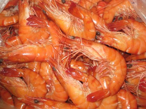 madagascar-L'exportation de crevettes estimée à 56 millions de dollars en 2015