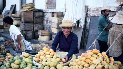 madagascar-La lutte contre le gaspillage alimentaire à Madagascar passe par la campagne