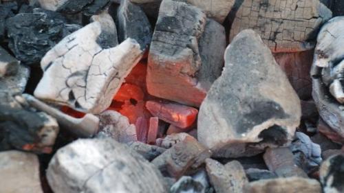 madagascar-Madagascar: un entrepreneur met au point un charbon écolo
