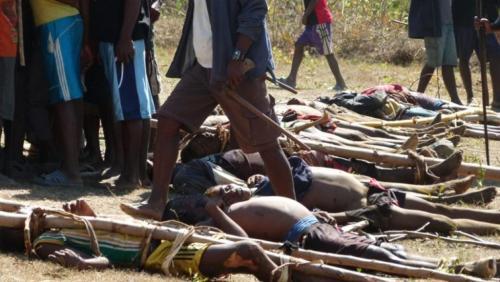 madagascar-Madagascar: malgré une unité spéciale, les dahalos continuent les attaques