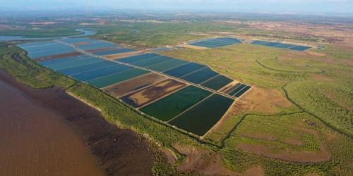 madagascar-L'aquaculture bio au service du développement durable à Madagascar