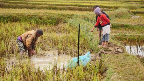 madagascar-Madagascar: des pluies artificielles pour combattre la sécheresse