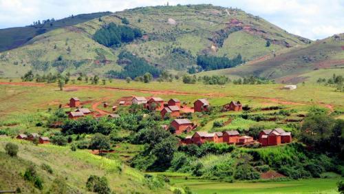 madagascar-Les terres des Malgaches convoitées par des groupes étrangers