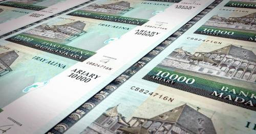 madagascar-Une parité fixe de l'ARIARY avec l'EURO ou USD serait-elle vraiment une aberration ?